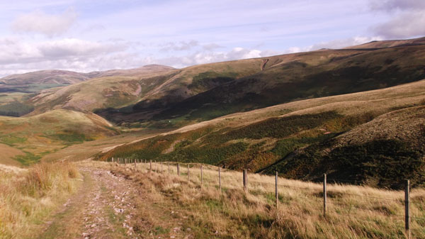 On-the-Cheviot-Hills